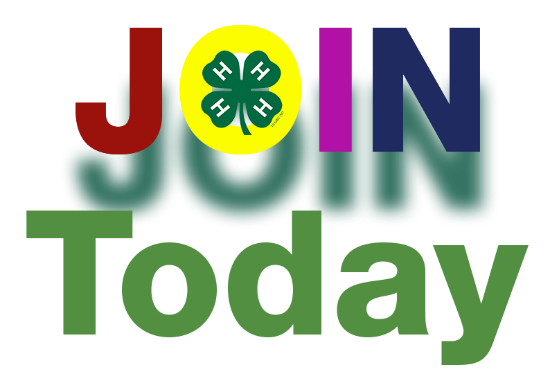 image Join 4-H Today
